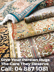 rug cleaning specialists wellington