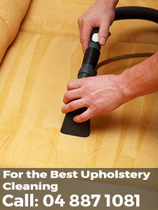 upholstery cleaning wellington